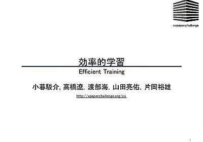 効率的学習 / Efficient Training(メタサーベイ)