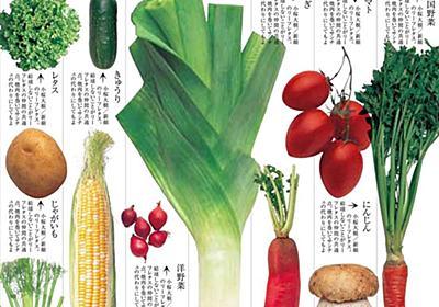 講談社の「野菜の本」回収・交換へ 厚労省が危険とする野菜「コンフリー」が掲載されていた - ねとらぼ