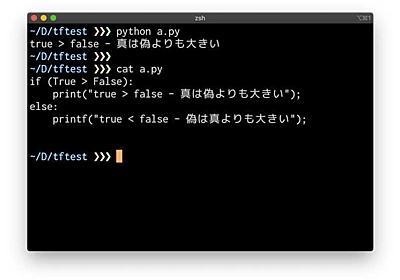 世界のプログラミング言語(29) 真偽型TrueはFalseより大きい?主要言語の歴史と共に比較してみよう | マイナビニュース