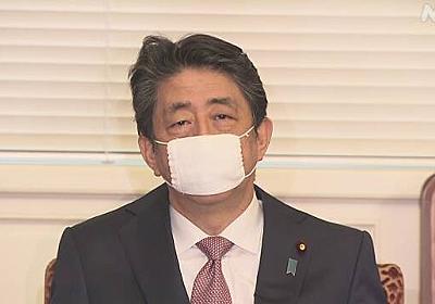 自民 役員会 「接触削減 議員は地元で徹底を」安倍首相 | NHKニュース