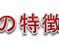 【AviUtl】x264guiExの導入方法と使い方【MP4・MKV・MPEG出力】