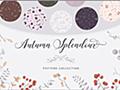 今だけ無料!秋にぴったりな草花がかわいくデザインされたパターン素材 -Autumn Splendour Patterns   コリス