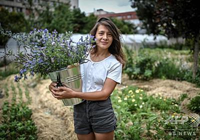 「スローフラワー」運動、コロナ危機で国産の花に注目 フランス 写真9枚 国際ニュース:AFPBB News