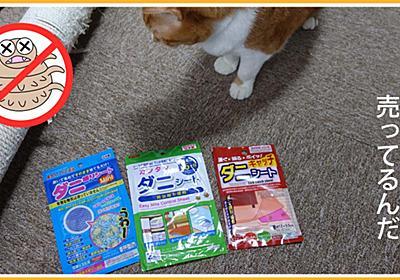100円ショップで見つけたダニ捕りシート | ヒヨリどんの猫日和II
