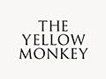 THE YELLOW MONKEY   ザ・イエロー・モンキー オフィシャルサイト