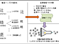 IPA、文字情報基盤の約6万種の漢字をJIS第4水準の範囲に置き換える際の参照情報「縮退マップ」検証版を公開 -INTERNET Watch
