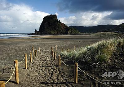 「ブタにも劣る」英国人観光客、不品行で国外退去の危機 NZ 写真1枚 国際ニュース:AFPBB News