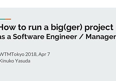 How to run a big(ger) project as a SWE / Manager
