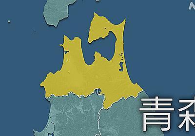 青森 弘前市内で新型コロナ感染急増 直近では東京に次ぐ高水準 | 新型コロナウイルス | NHKニュース