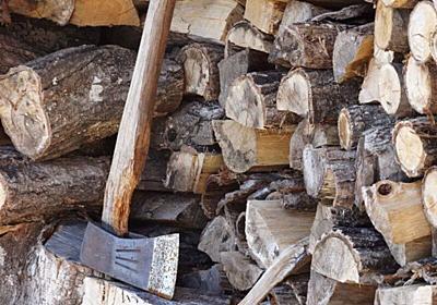 焚き火に必要な薪だけど、節約法や薪に適した樹種ってあるの? - 格安^^キャンプへGO~!