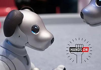 「まだ子犬だから」っていうのは違くない?:ソニーaiboのハンズオン | ギズモード・ジャパン
