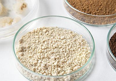 「ラボ培養のコーヒー」が世界で初めて実現、味も香りも本物レベル - GIGAZINE