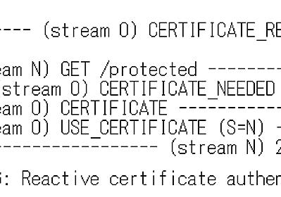 Secondary Certificate Authentication in HTTP/2 という仕様について - ASnoKaze blog