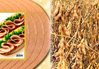 日本ハムが植物肉、3月から参入 健康志向で需要増  :日本経済新聞