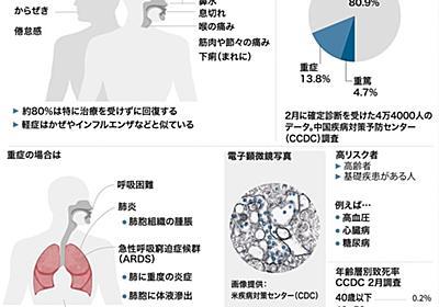【図解】新型コロナウイルス:感染したらどうなる? 写真7枚 国際ニュース:AFPBB News