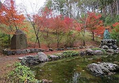 紅葉が進む常照寺・2018年 | 京都観光旅行のあれこれ