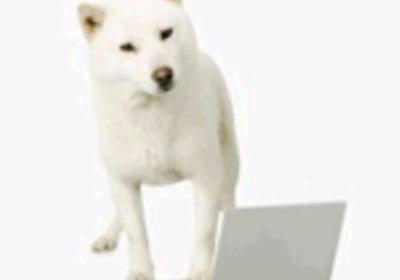 カイくん勇退、ソフトバンクのお父さん犬が引退します!   iPhoneミステリアス