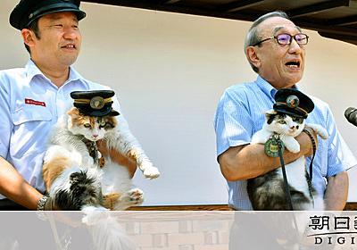 ネコの手借りて赤字にパンチ 貴志川線の起死回生目指す:朝日新聞デジタル