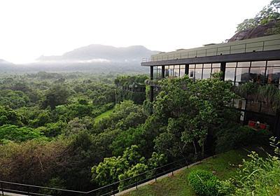 森に埋もれたホテル!スリランカ「ヘリタンス カンダラマ」はジェフリーバワの傑作 | スリランカ | LINEトラベルjp 旅行ガイド