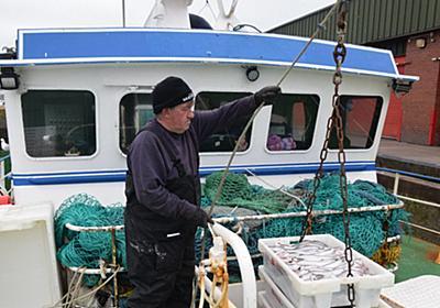 EU離脱に英国漁師が恨み節 半年経過も恩恵なく コロナ禍も直撃   毎日新聞