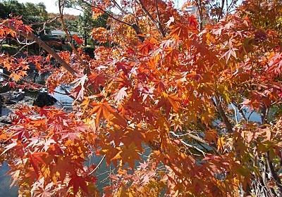 【街中のオアシスを楽しむ名古屋市熱田区のぶらり旅①~宮の渡し公園・白鳥庭園~】 - 可能性は無限大