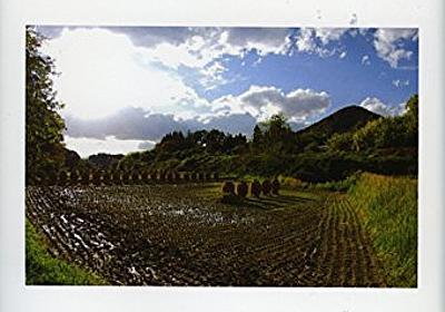 Amazon.co.jp: 福島に農林漁業をとり戻す: 濱田武士, 小山良太, 早尻正宏: Books