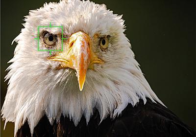 """オリンパス、""""鳥認識""""対応の「OM-D E-M1X」ファームウェアVer.2.0を12月3日公開 - デジカメ Watch"""