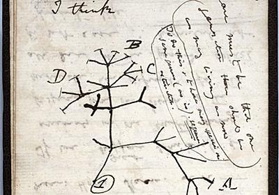 ダーウィンの「進化論」ノート消える、盗難か 英ケンブリッジ大 写真2枚 国際ニュース:AFPBB News