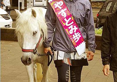 「話聞くより馬に触って」れいわ新選組の安冨歩氏が白馬を連れて演説 - ライブドアニュース