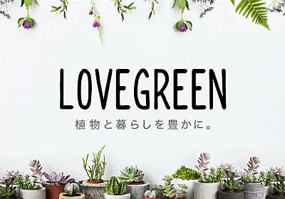 LOVEGREEN(ラブグリーン) | 植物と暮らしを豊かに。