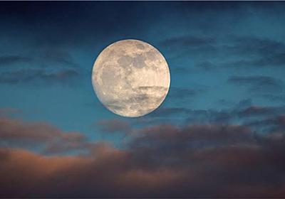 お月さまと共に、愉しむ暮らし。 - Bio Life