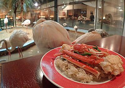 フラミンゴに見られながらカニピラフを食べる~投稿頼りの旅in茨城~ :: デイリーポータルZ