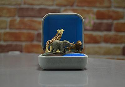 自分だけの小さな世界「指輪ケース箱庭」を作る :: デイリーポータルZ