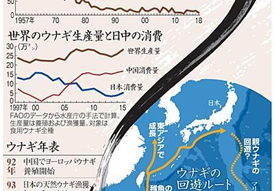 記録的不漁、絶滅危惧種 それでもウナギを食べますか?:朝日新聞デジタル