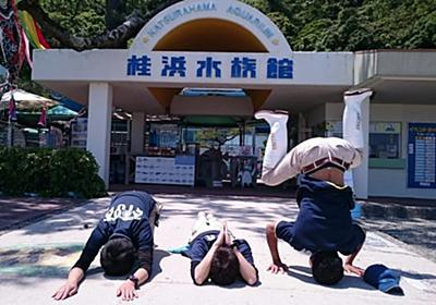 頭で倒立! 高知の水族館が投稿したスタッフの写真に「調子の乗り方好き」の声、担当者に聞く | オトナンサー