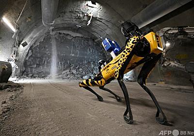 ロボット犬、 核廃棄物処分場で訓練中 フランス 写真12枚 国際ニュース:AFPBB News