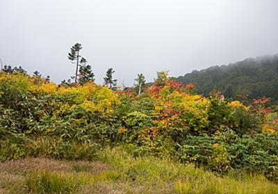 十和田八幡平国立公園 大場谷地 - t0zawa's blog