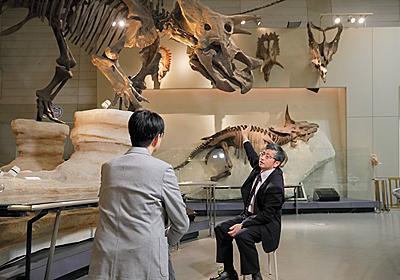 第3回 恐竜絶滅の謎を解く鍵と、その意味とは | ナショナルジオグラフィック日本版サイト