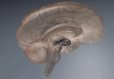 脳波でデバイスを制御するインプラントがFDAの承認を受ける - GIGAZINE