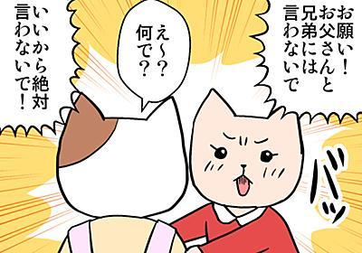 「初潮を赤飯で祝う風習」は恥ずかしいからやめてほしい - きなこ猫の不妊活ブログ