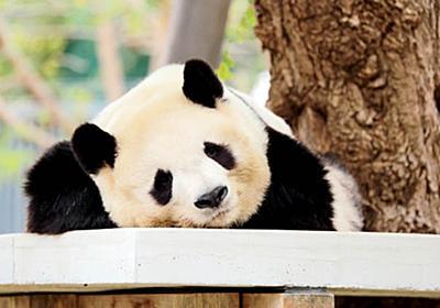 「中国の人から受けるストレス」の理由:日経ビジネスオンライン