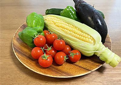 【夏野菜】最もコスパの高い野菜はどれ?〜1株あたりに収穫できる実の数は?〜 - アタマの中は花畑