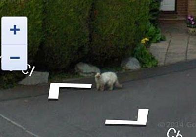 今は亡き、愛する人やペットの姿が!偶然Googleストリートビューにとらえられていた、心にグッとくる思い出のメモリー : カラパイア