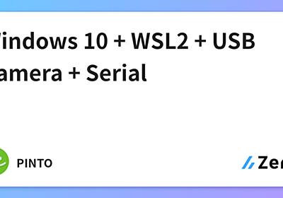 Windows 10 + WSL2 + USB Camera + Serial