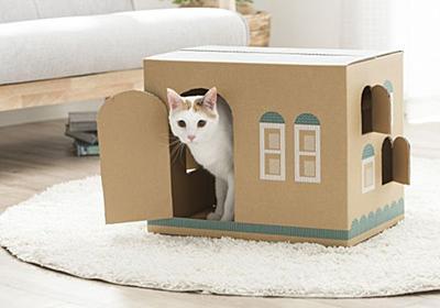 段ボールが「猫の家」に変身! 猫砂の梱包資材、廃棄から有効活用へ - withnews(ウィズニュース)