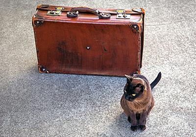 """観光地、グルメ……どこ行こう? 旅の目的地や""""おすすめ""""スポットを提案してくれるWebサービス - はてなニュース"""
