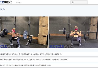 筋肉の部位ごとに適切な筋トレやストレッチ法を映像で説明してくれる「MuscleWiki」 - GIGAZINE