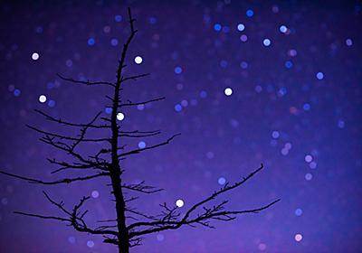 星空をボケさせて幻想的な背景にした写真の撮り方 - Circulation - Camera