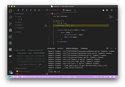 Rust IDE に化ける VSCode - OPTiM TECH BLOG
