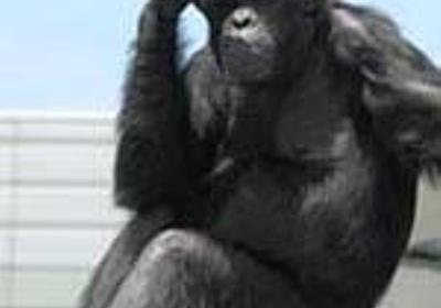 これでも「少年法は未成年を甘やかしてる」? - apesnotmonkeysの日記